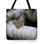 Farfalla Tote Bag