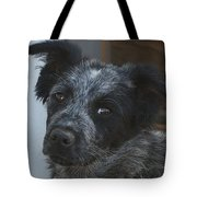 Farm Puppy  Tote Bag