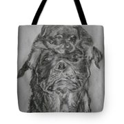 Father And Puppy  Tote Bag