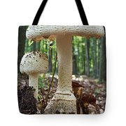 Father And Son Mushrooms Tote Bag