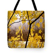 Father Nature Tote Bag