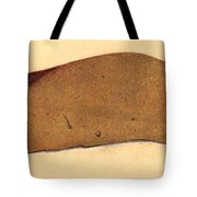 Fatty Liver, Pathology, Illustration Tote Bag