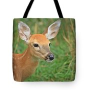 Fawn 4 Tote Bag