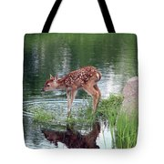 Fawn At The Water Hole Tote Bag