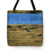 Fawn Caribou Tote Bag