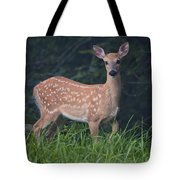 Fawn Doe Tote Bag