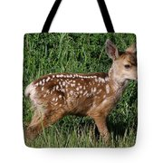 Fawn In The Open Tote Bag