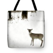 Fawn In The Snow Tote Bag