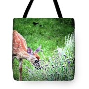 Fawn Visits Flowers Tote Bag