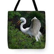 Feather 8-8 Tote Bag