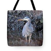 Feather Boa Tote Bag