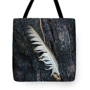 Feather In Burnt Tree Tote Bag