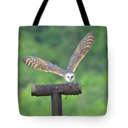 Feathers 6 Tote Bag