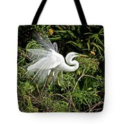 Beautiful Feathers And Foliage Tote Bag