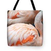 Feathers Of Flamingo Tote Bag