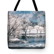 February 22 2010 Tote Bag
