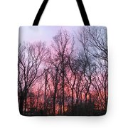 February At Twilight Tote Bag