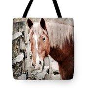 February Horse Portrait Tote Bag