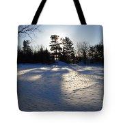 February Pine Tree Shadows Tote Bag