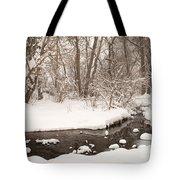 February Snow Tote Bag