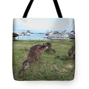 Feeding Duck's Tote Bag
