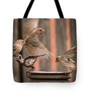 Feeding Finches Tote Bag
