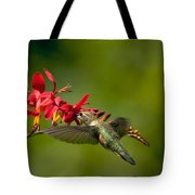 Feeding Hummer Tote Bag