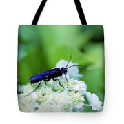Feeding Insect Tote Bag
