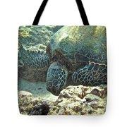 Feeding Sea Turtle Tote Bag