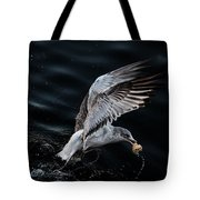 Feeding Seagull Tote Bag