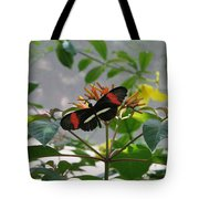 Feeding Time - Butterfly Tote Bag