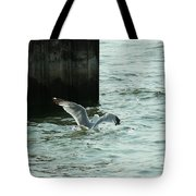 Feeding Time In Ephraim Wi Tote Bag