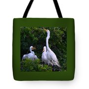 Feeding Time In The Great White Egret Rookery Tote Bag