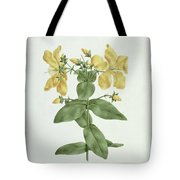 Feel-fetch - Hypericum Quartinianum Tote Bag