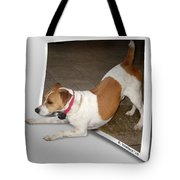 Feeling Frisky Tote Bag