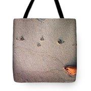 Feet Around The World #31 Tote Bag