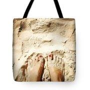 Feet Around The World #4 Tote Bag