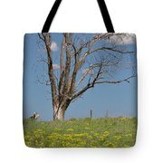 Feet Of Gold Tote Bag
