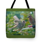 Female And Male Crossbills    August  Indiana Tote Bag