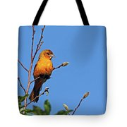 Female Baltimore Oriole Tote Bag