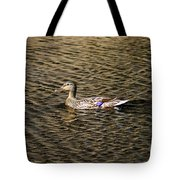 Female Beauty Tote Bag