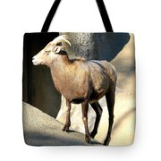 Female Bighorn Sheep Ewe Tote Bag
