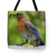 Female Bluebird Feeding Her Brood Tote Bag