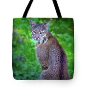 Female Bobcat Tote Bag