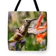 Female Broadtail Humingbird Tote Bag