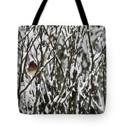 Female Cardinal In The Snow Tote Bag