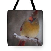 Female Cardinal In The Winter Tote Bag