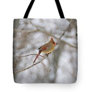 Female Cardinal In Winter Tote Bag