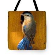 Female Eastern Bluebird 7 Tote Bag