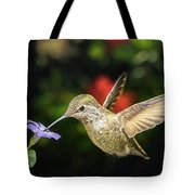 Female Hummingbird And A Small Blue Flower Left Angled View Tote Bag